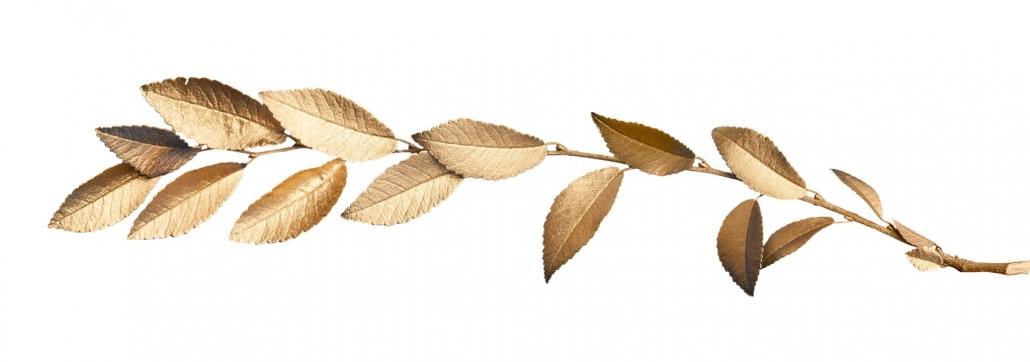 El Paso Wedding Venue Copper Leaf